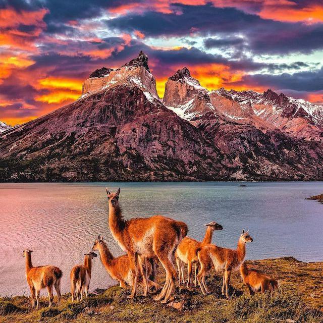 Cuernos del Paine in Patagonia