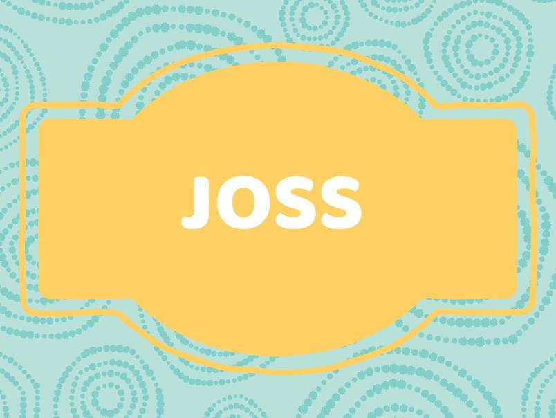Baby Name Inspiration: Joss