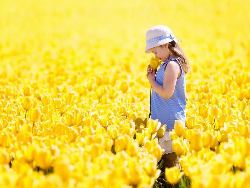 Girl in tulip field
