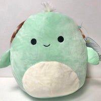 Antoni the Turtle Squishmallow