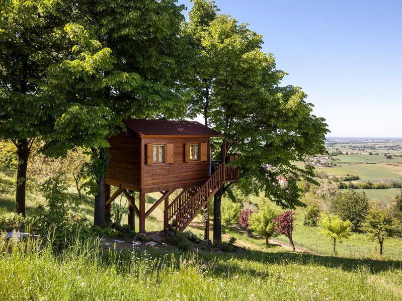 Piedmont Airbnb