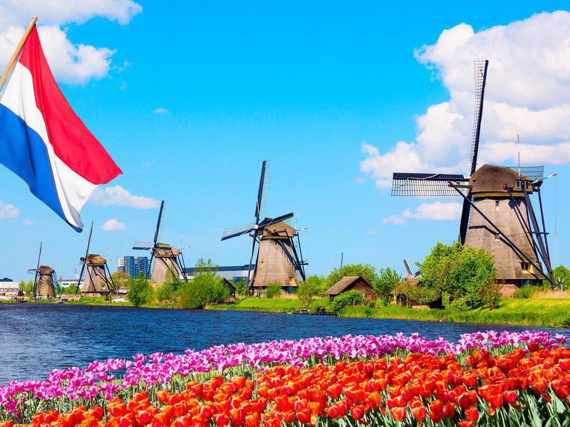 Colorful spring landscape in Netherlands