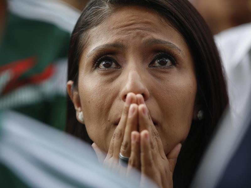 Mexico soccer fan