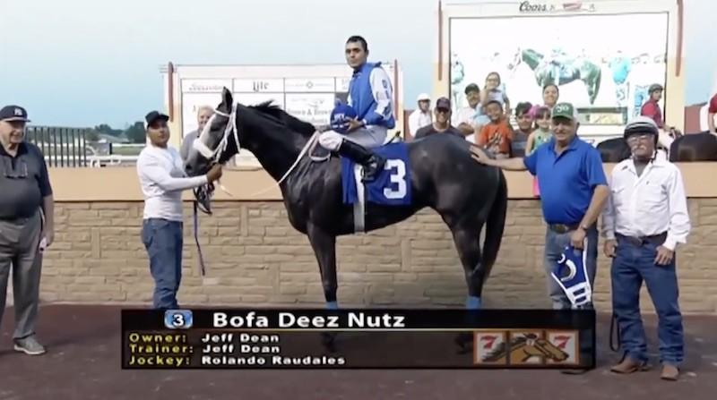 Bofa Deez Nuts