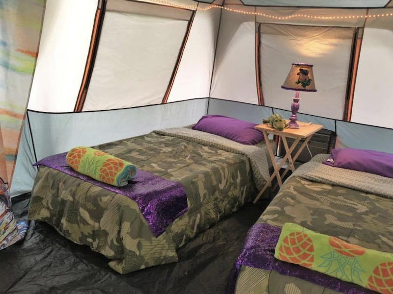 Alligator Tent
