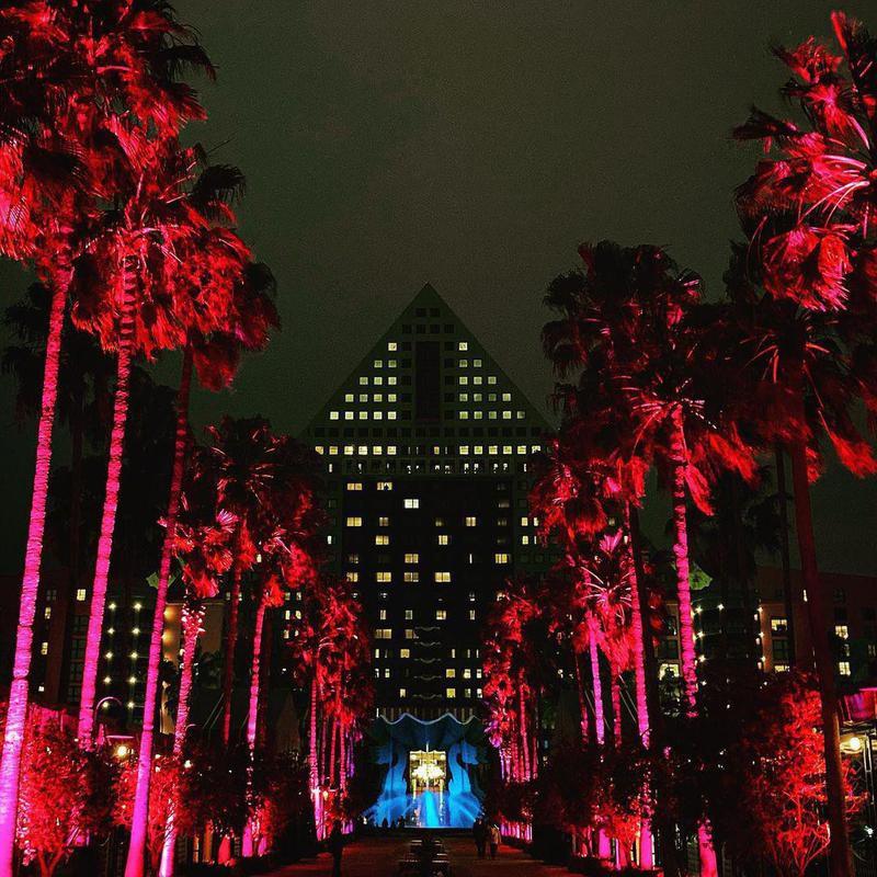 Pathway to Walt Disney World Dolphin Hotel