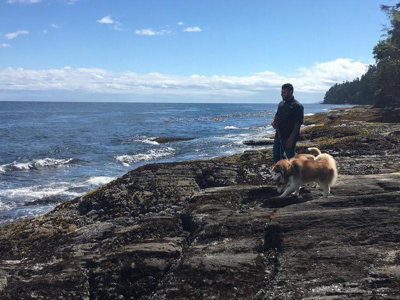 Man walking his dog on the beach