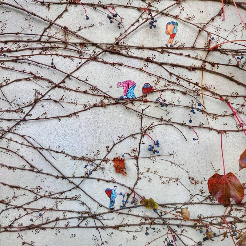 Harvest street art in Avignon, France