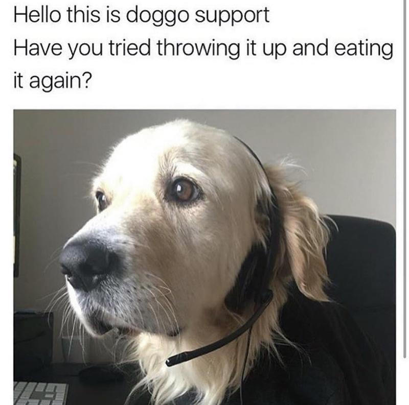 Doggo help line