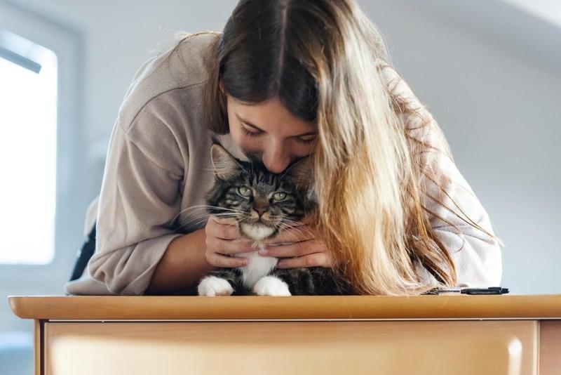 Upper-Body Petting