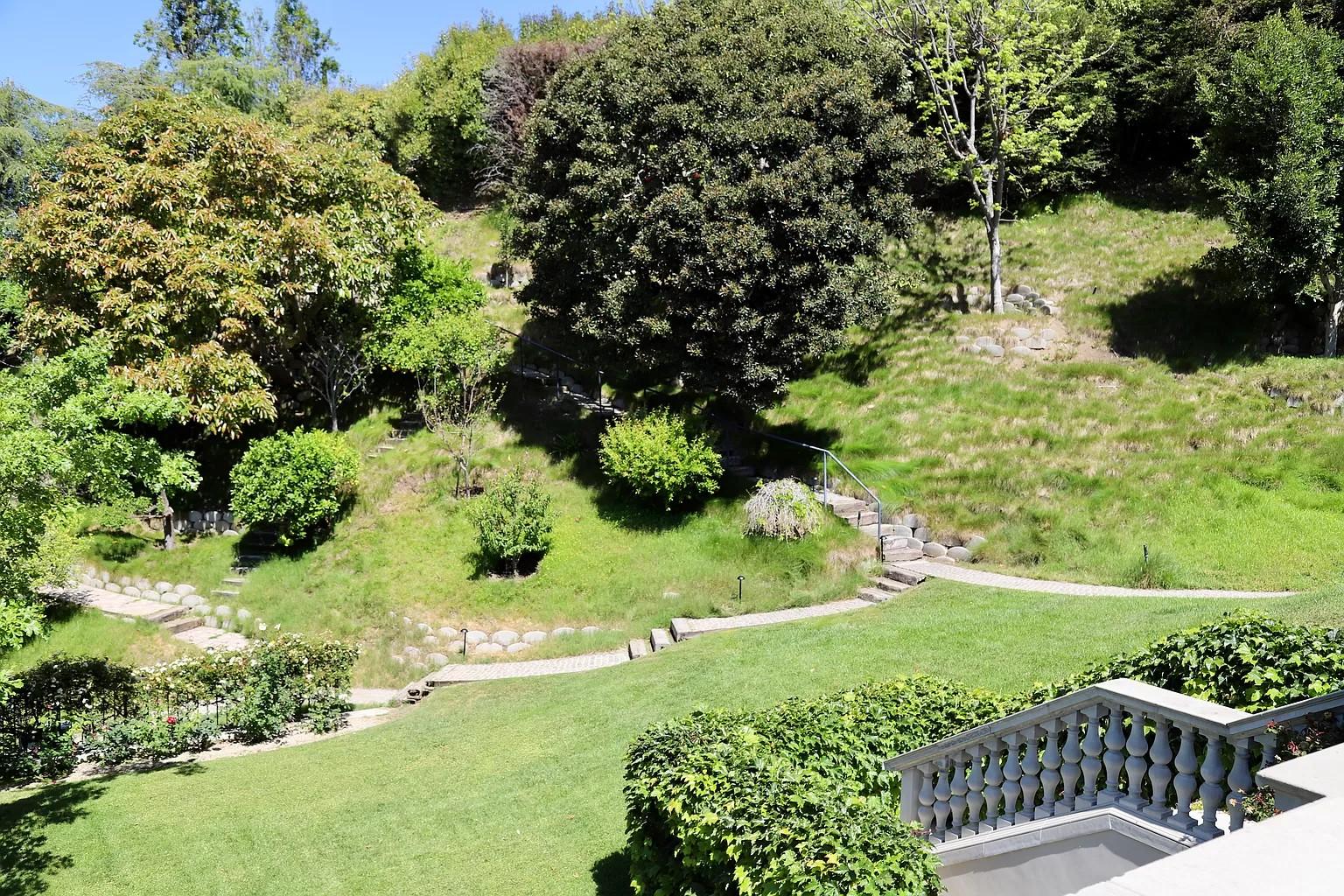 Backyard hills
