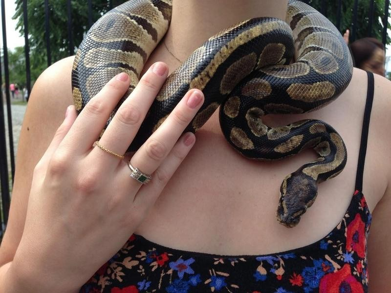 Snake around a woman's neck