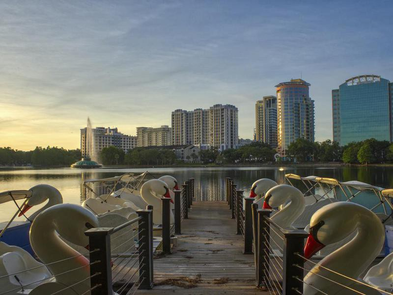Lake at Downtown Orlando