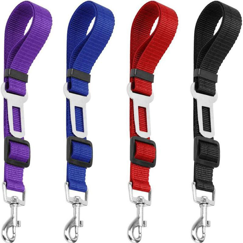 Colorful pack of dog seat belts