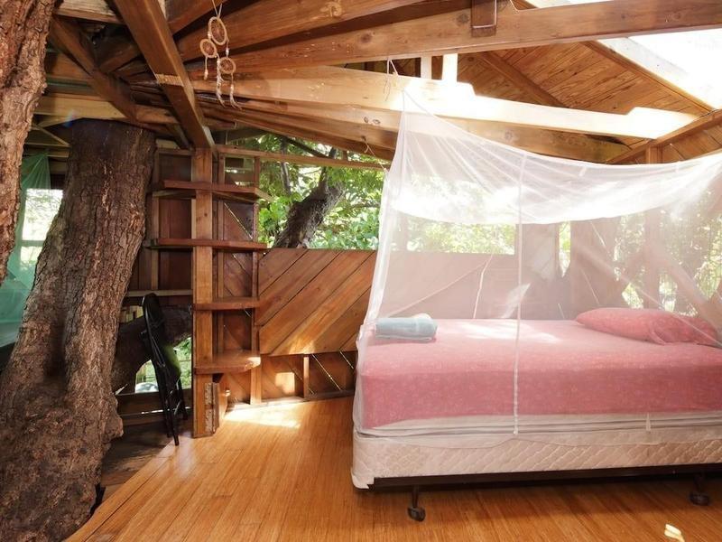treehouse home