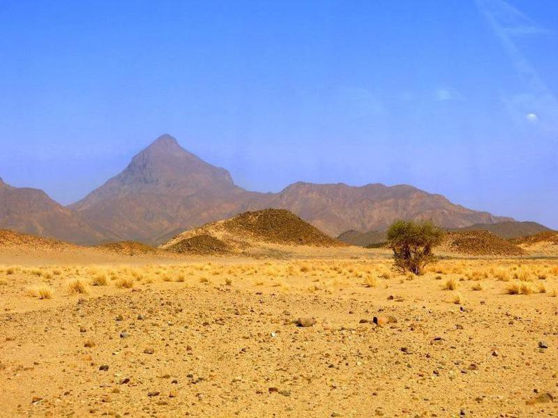 Aïr and Ténéré National Nature Reserve