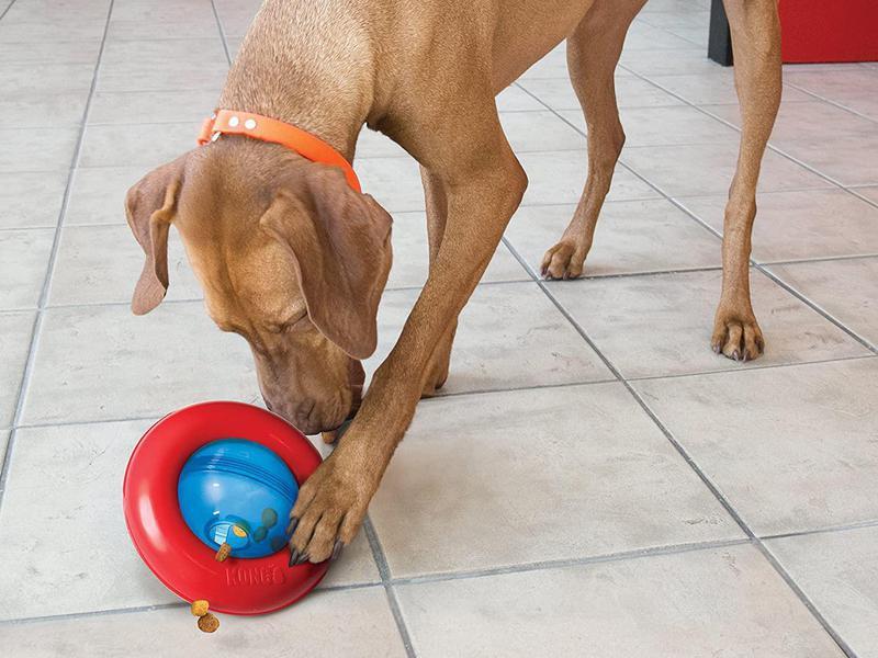 Kong Gyro Interactive Treat Dispensing Dog Toy