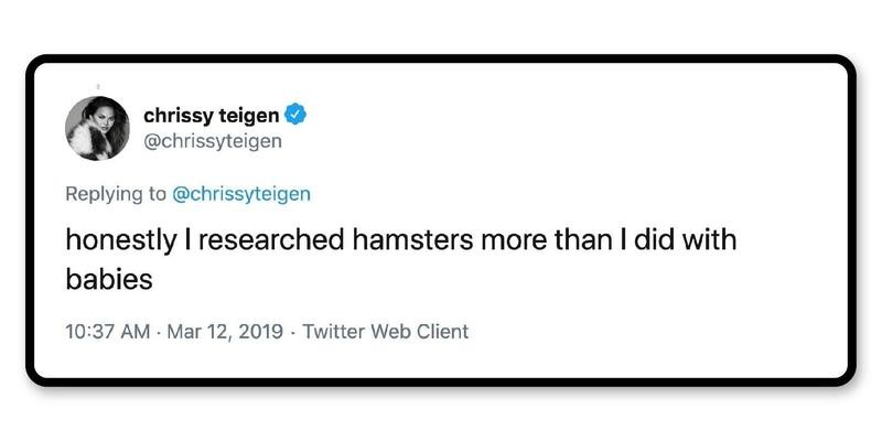 Babies are easy; hamsters are not.