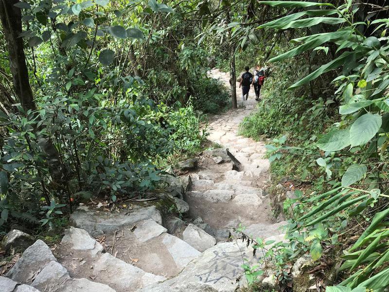 Machu Picchu Walk