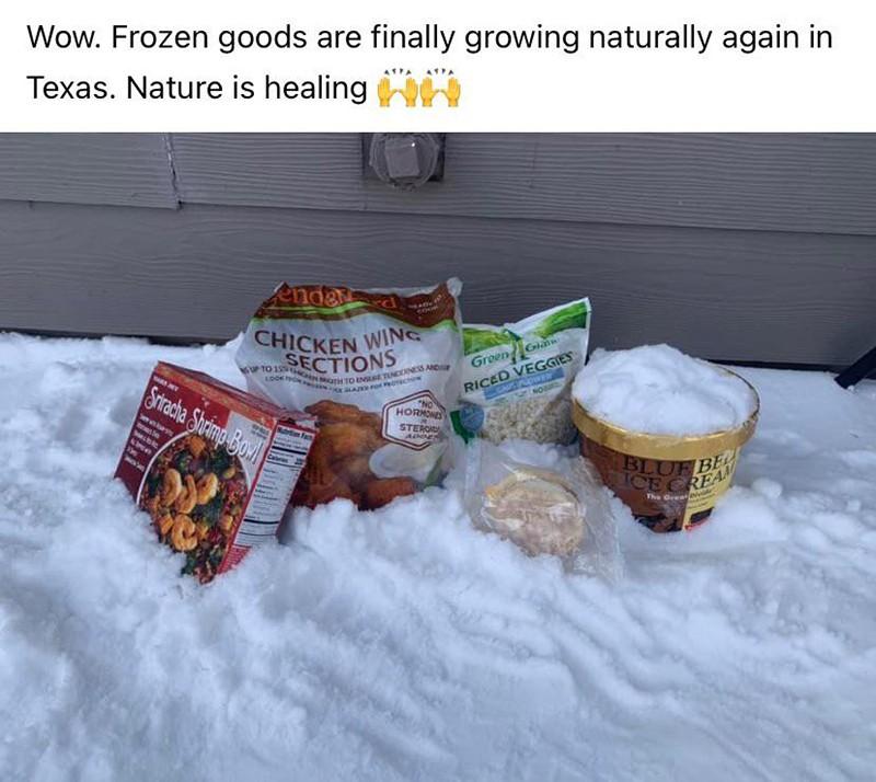 Frozen food in the snow