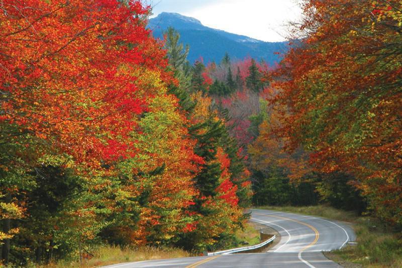 Fall Foliage Drive