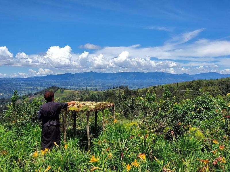 Luxury eco hotel Papua New Guinea organic bird feeders