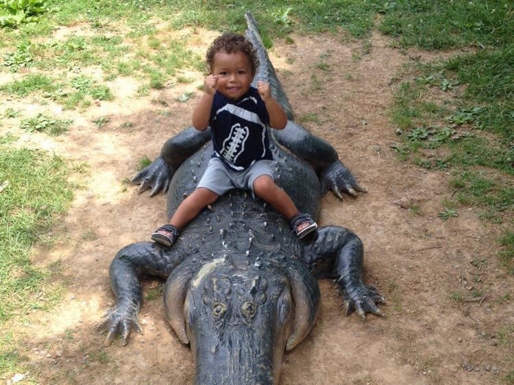 Toddler sitting on alligator