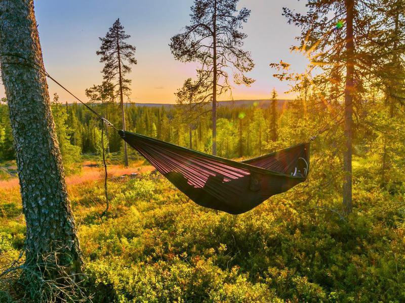 Hammock in Lapland