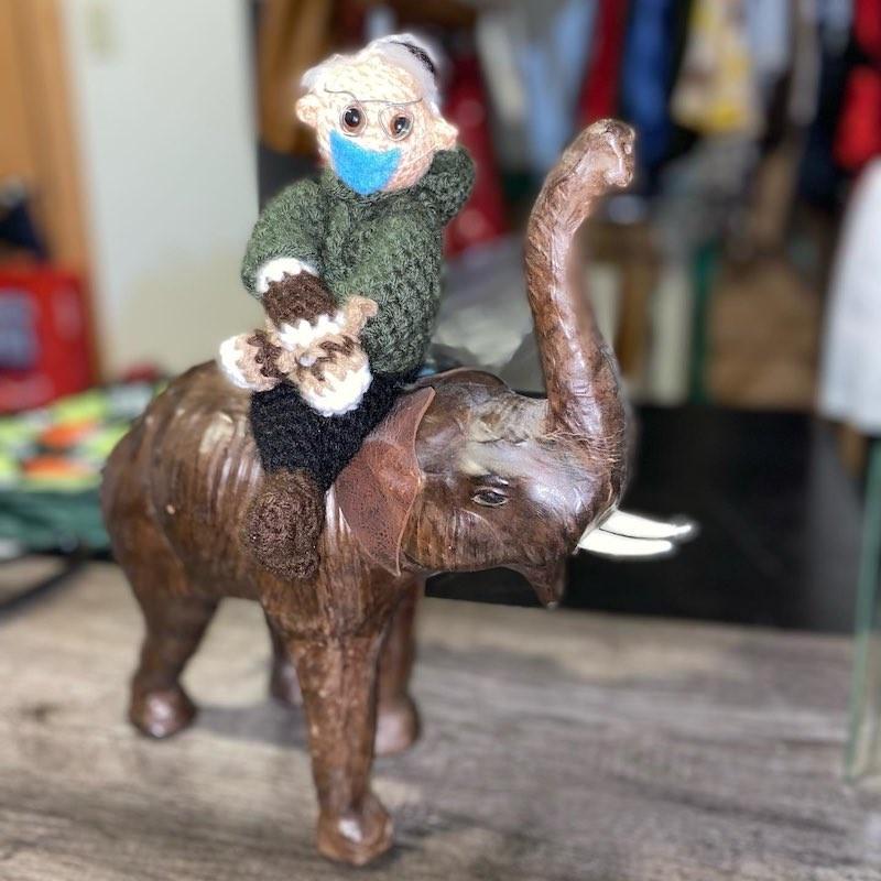 Bernie Sanders on an elephant