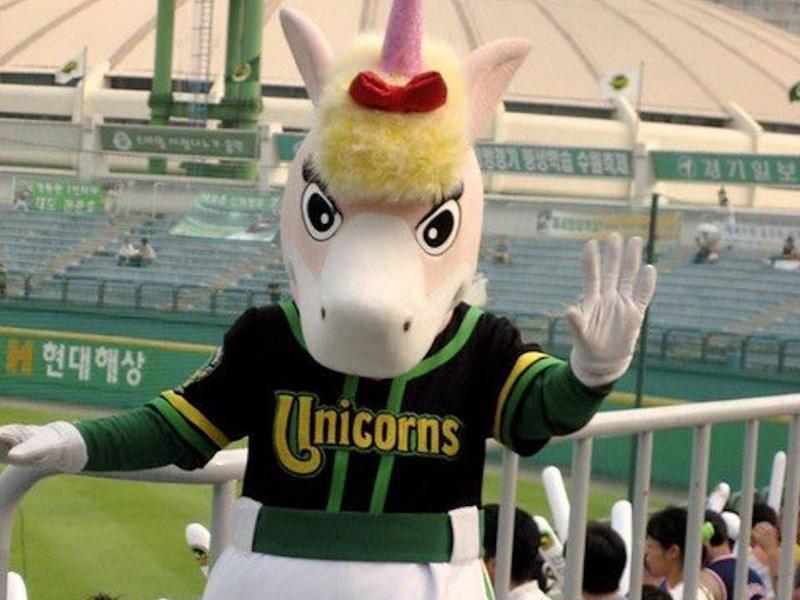 Hyundai Unicorns
