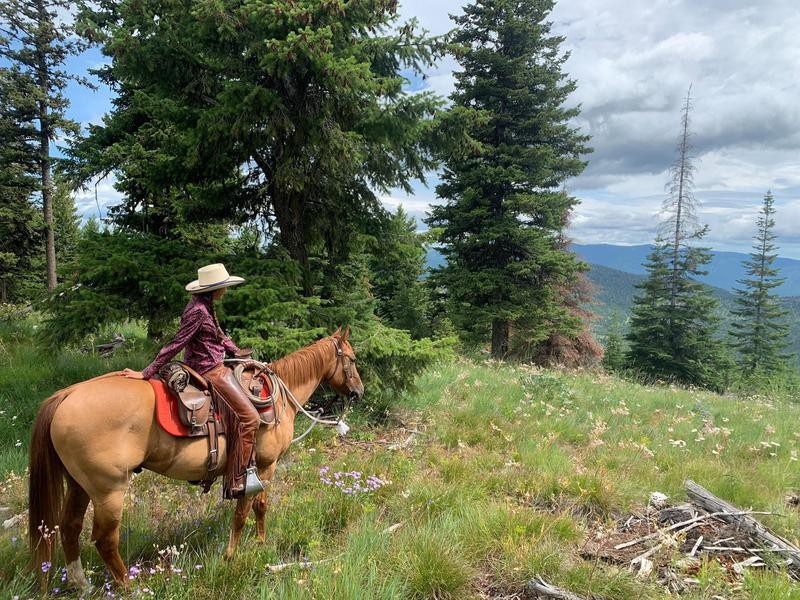 McGinnis Meadows Cattle & Guest Ranch