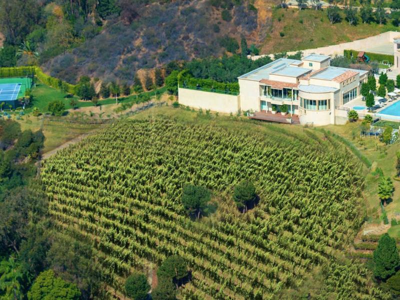 Palazzo di Amore wine