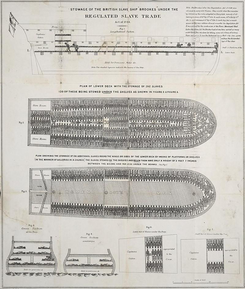 The slave ship Brookes