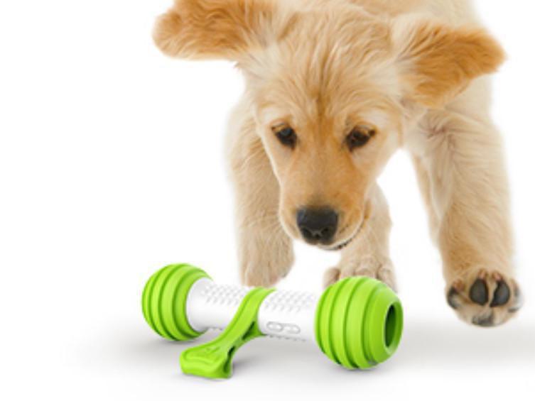 Petgeek Automatic Interactive Dog Toy