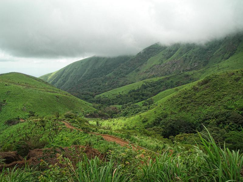 Mount Nimba Strict Nature Reserved