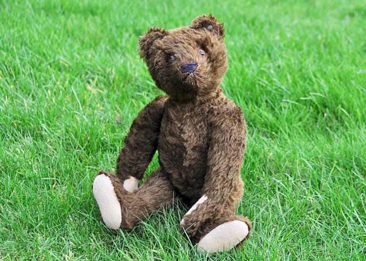 Bruin Steiff Teddy Bear