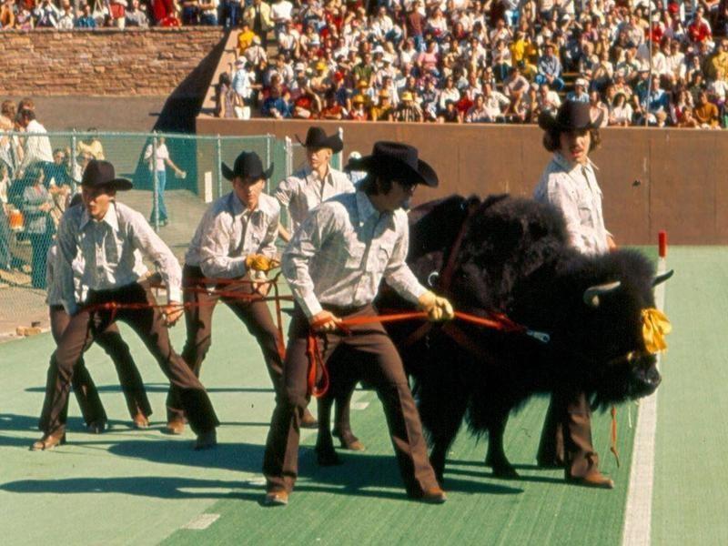 The Original Ralphie, 1974