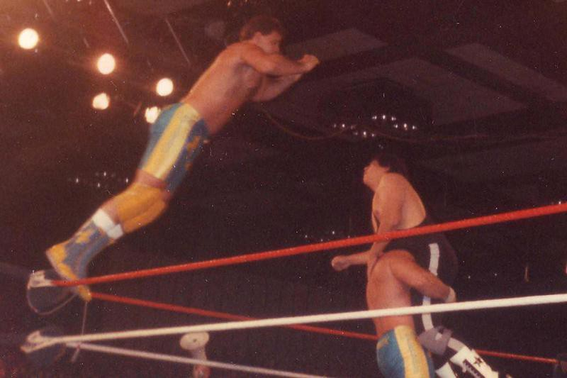 The Fabulous Rougeau Brothers