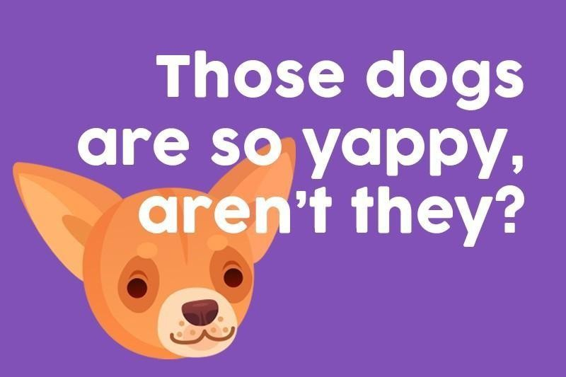 Those dogs are so yappy, aren't they?
