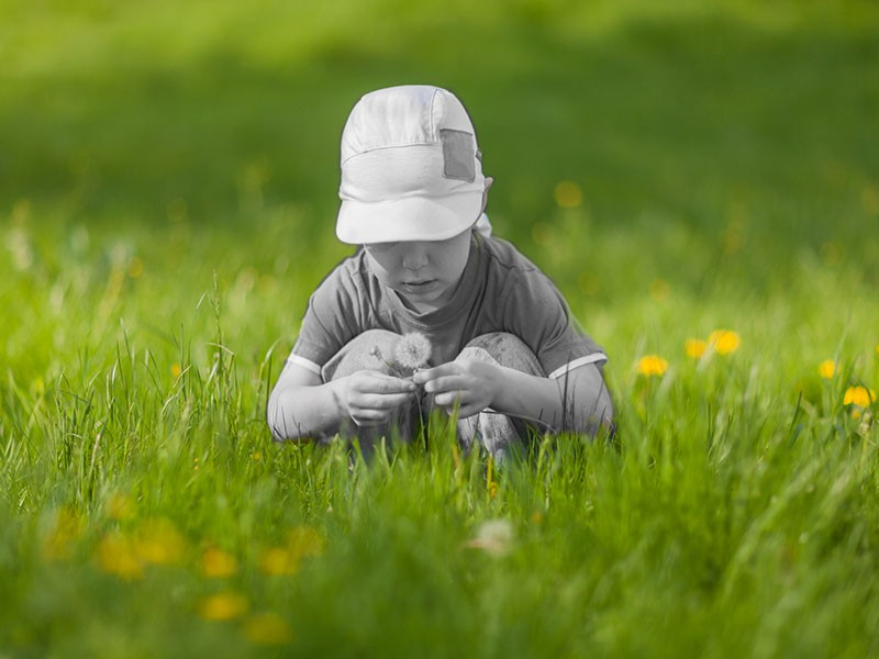 A little boy sits on his haunches in the grass and studies the fabulous white fluffy dandelions