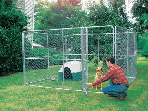 Tractor Supply dog kennel: Stephens Pipe and Steel Dog Kennel