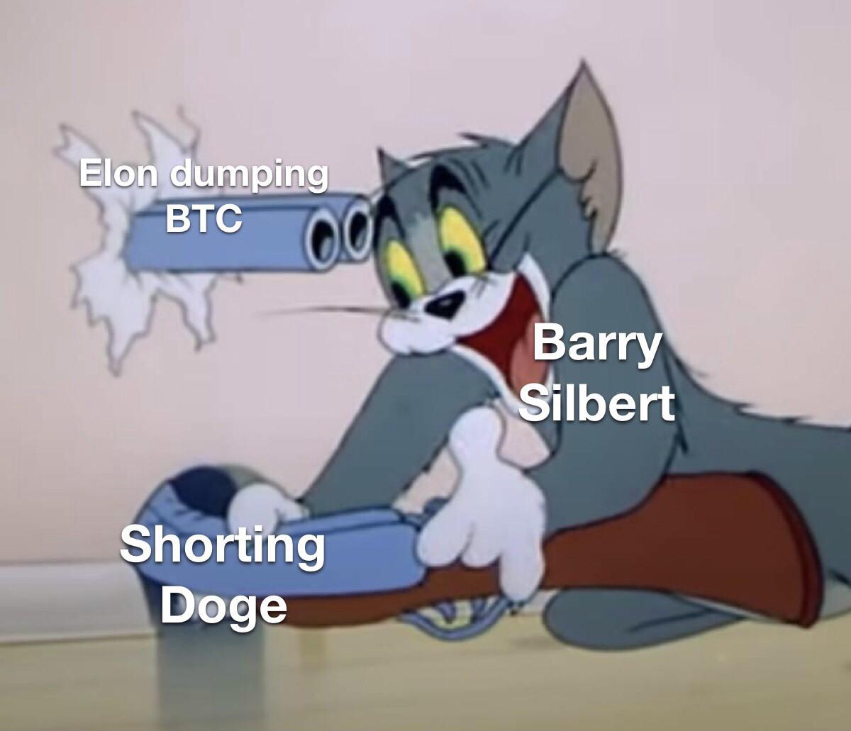 Barry Silbert dogecoin meme