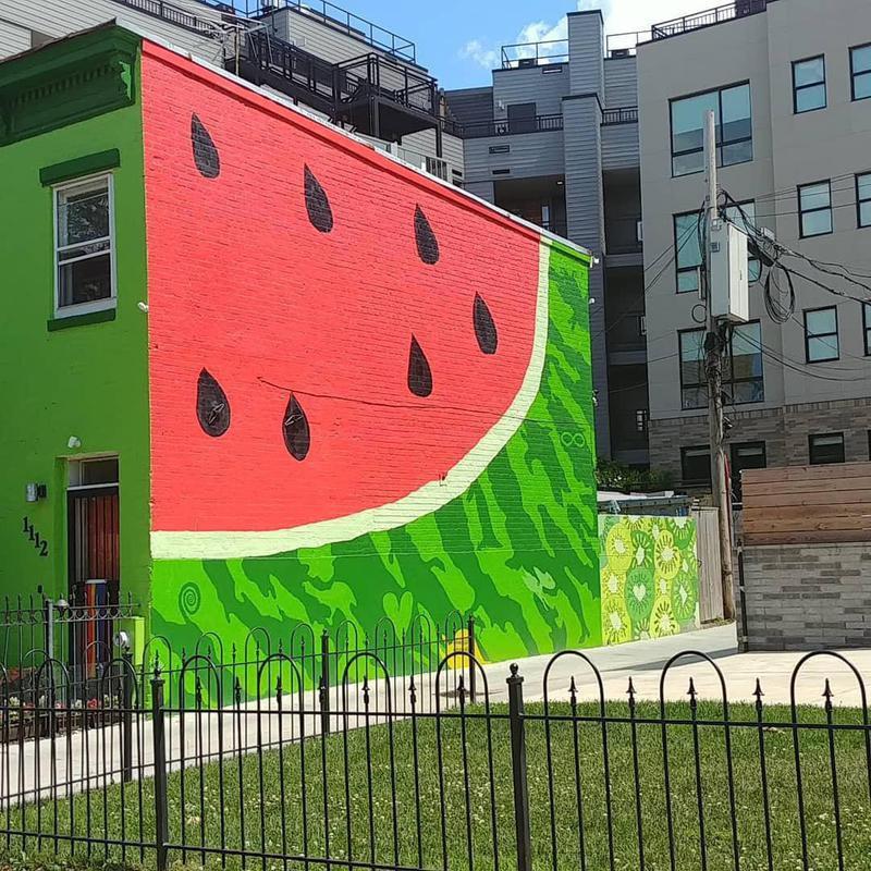 The Watermelon House