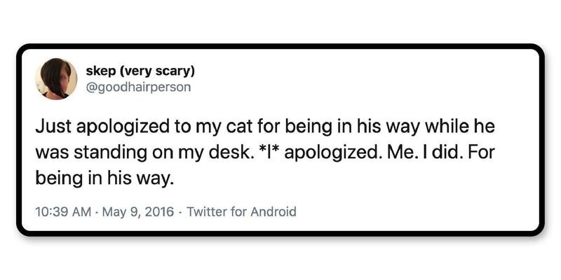 The meow-triarchy is alive.
