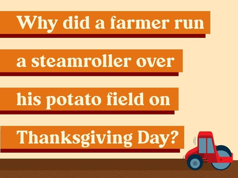 Why did a farmer run a steamroller over his potato field on Thanksgiving Day?