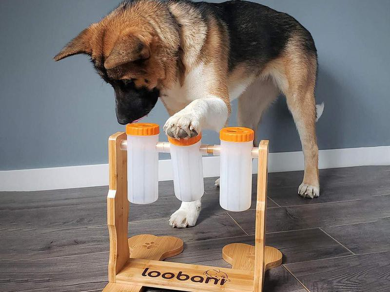 Loobani Dogs Food Puzzle Feeder Toys for IQ