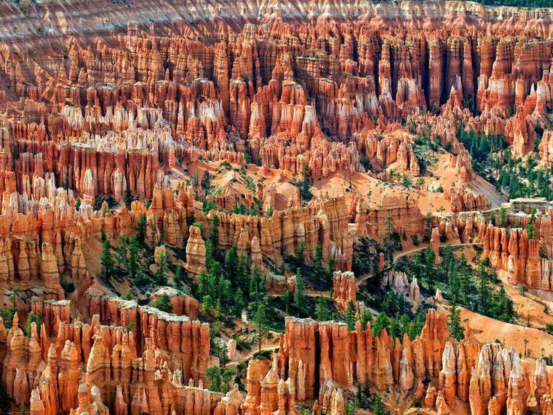 The Amphitheater at Bryce Canyon