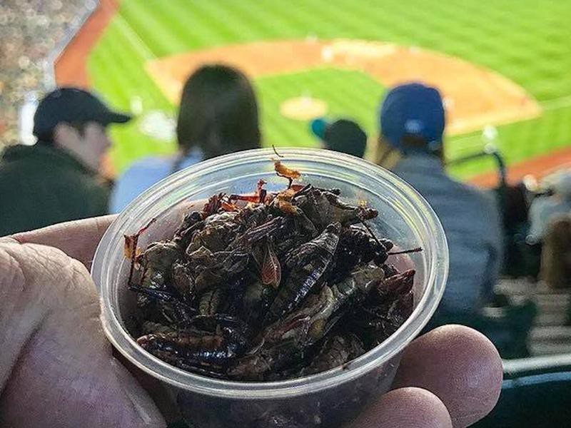 Toasted Grasshoppers
