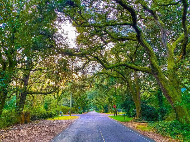 Magnolia Springs, Alabama