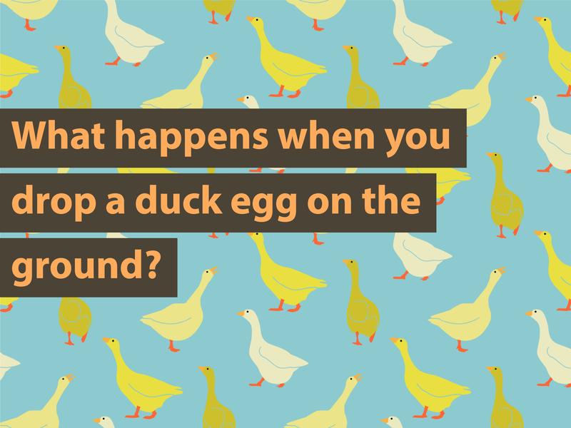 Duck Joke